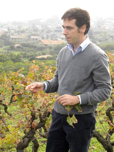 sicilian_winemaker