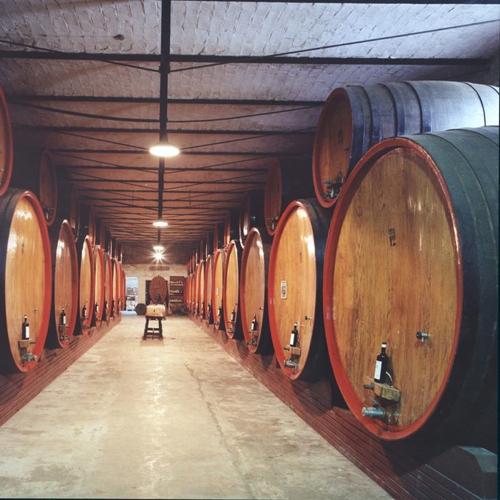 scarpa_winery5