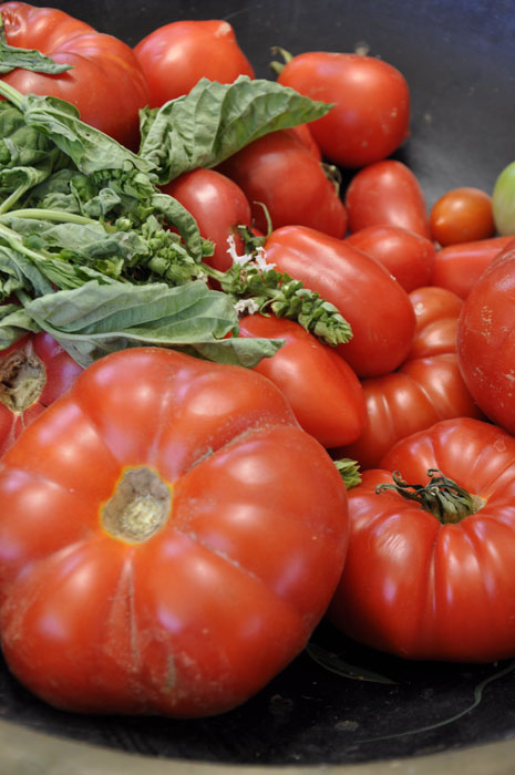 Naples Cooking Classes - Tomatoes