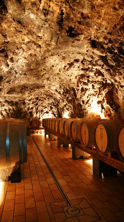 Amalfi-Winetasting-2