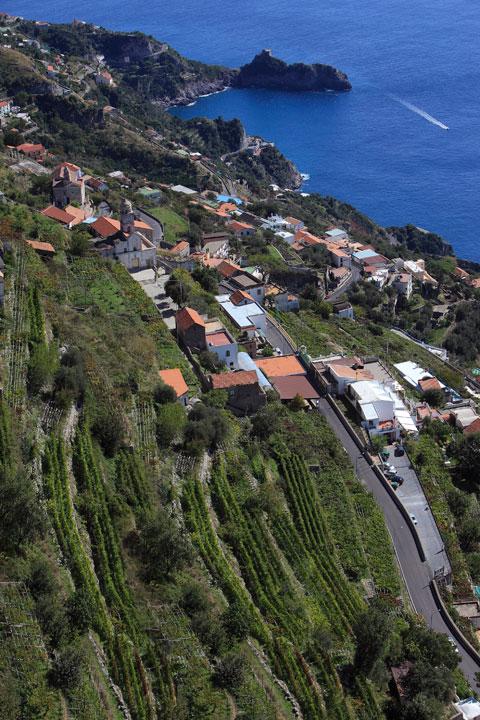 Amalfi-Winetasting-3